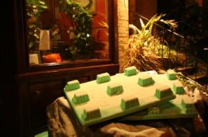 Giant Lego!