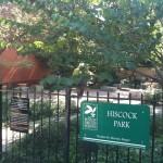 Best Park Ever